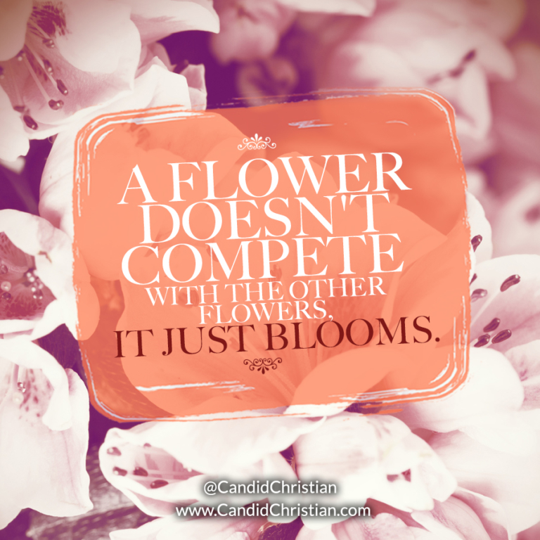 a-flower-doesnt-compete